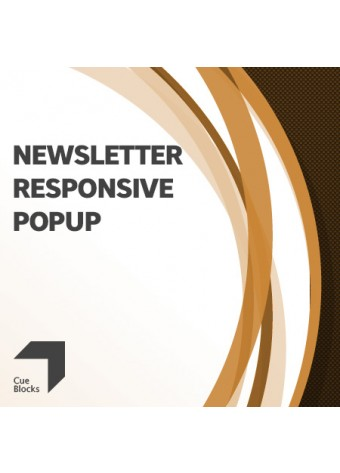 Newsletter Responsive Popup Preview
