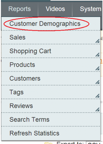 Customer Demographics Reporting Backend