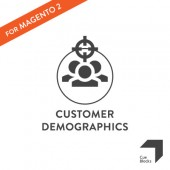 Customer Demographics Reporting Tool Preview